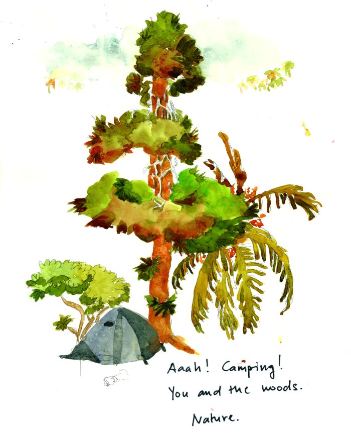 camping1small